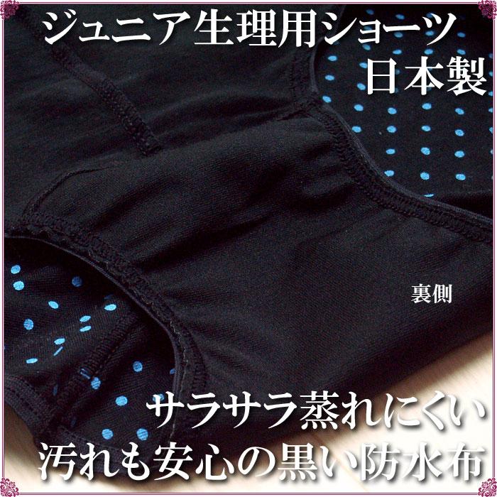 ジュニア サニタリーショーツ ドット柄 日本製カラー写真01