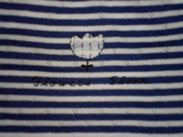 ジュニア サニタリーショーツボーダー カジュアルタイプカラー写真02