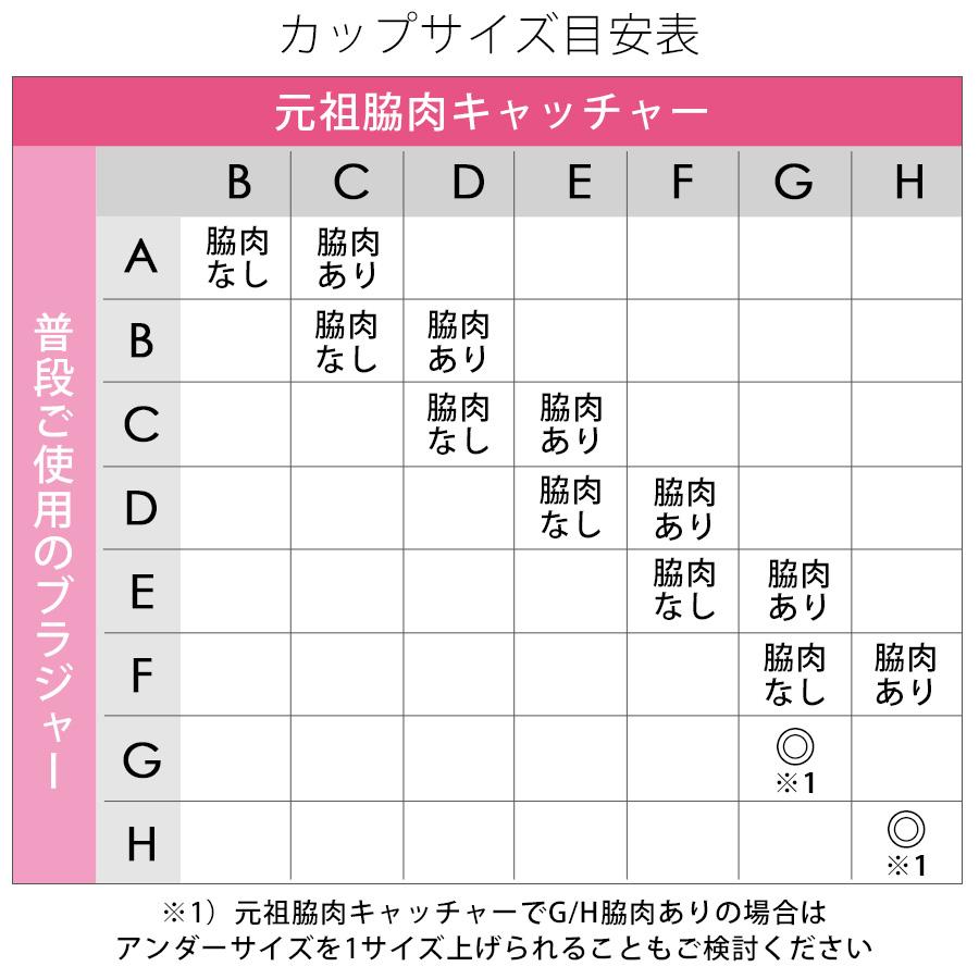 元祖脇肉キャッチャー 脇高ブラその他の写真02